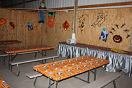 Kids birthday parties at the farm